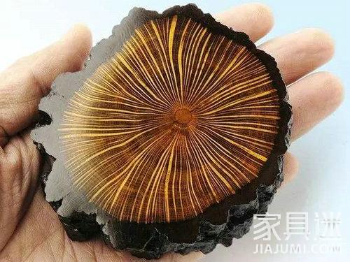 9木质材料